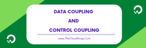 data coupling and control coupling